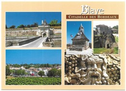 Blaye Citadelle Des Bordeaux Photos Danièle Schneider Multivues - Blaye