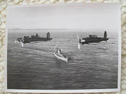 Three Blackburn Skuas 216x166 Mm - Aviation