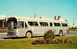 """ Les Autobus De La Rive Sud "" - Transport - Bus Car Autocar - Nicolet , Québec Canada - Bus & Autocars"