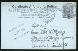 SALA CONSILINA - SALERNO - 1920 - CARTOLINA COMMERCIALE - CARDINALE - Negozi