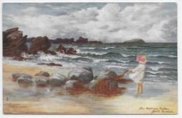 North Berwick - The Harbours Rocks - Tuck Oilette 7214 - Berwickshire