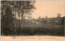31oi  1123 CPA - FORET  DE FONTAINEBLEAU - VALLON DE LA PETITE ARABIE - Fontainebleau