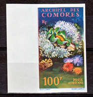 Comores PA  5 Faune Et Flore Marine Non Dentelé Neuf ** TB MNH Sin Charnela - Posta Aerea