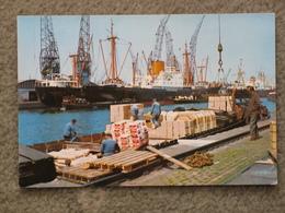 AMSTERDAM DOCKS UNLOADING - Cargos