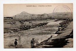 - CPA TAOURIRT (Maroc) - L'Oued-Zâa Et Ses Falaises 1916 - Edition Millet - - Autres
