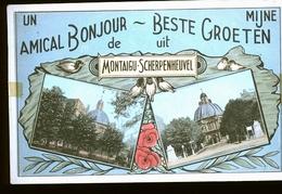 MONTAIGU - Belgique