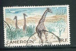 CAMEROUN- P.A Y&T N°47- Oblitéré (girafes) - Aéreo