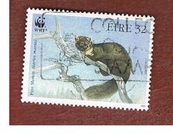 IRLANDA (IRELAND) - SG 849 - 1992  ENDANGERED ANIMALS: MARTE MARTES - USED - 1949-... Repubblica D'Irlanda
