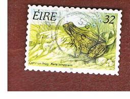 IRLANDA (IRELAND) - SG 972   - 1995  ANIMALS: RANA TEMPORARIA    - USED - 1949-... Repubblica D'Irlanda