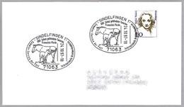 Proteccion De Especies Protegidas - CABALLO DE PRZEWALSKI - Equus Ferus Przealskii. Sindelfingen 1997 - Protección Del Medio Ambiente Y Del Clima