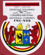 Sticker Autocollant Aufkleber Saint-Ghislain Baudour Douvrain FNC NSB Congres National (des Trous De Punaises) - Autocollants