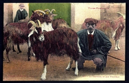 MOUT- CPA ANCIENNE FRANCE- LE CHEVRIER ET SON TROUPEAU- TRÈS GROS PLAN- - Elevage