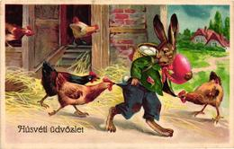 Easter, Roosters Attacking A Poor Bunny Wanderer, Old Postcard - Easter