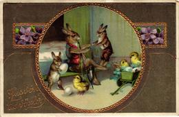 Easter, Smoking Bunny Grandpa With Little Bunnies And Chicks, Old Postcard - Easter