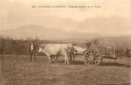 WW 64 Environs BIARRITZ. Attelage Basque Et La Rhune. Impeccable Et Vierge - Biarritz