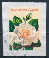 """France - Rose """"Mme Alfred Carrrière"""" YT 3248 Obl Sur Fragment - France"""