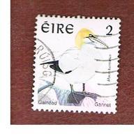 IRLANDA (IRELAND) - SG 1032 - 1997   BIRDS: MORUS BASSANUS  - USED - 1949-... Repubblica D'Irlanda