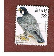 IRLANDA (IRELAND) - SG 1092  - 1997   BIRDS: FALCO PEREGRINUS  - USED - 1949-... Repubblica D'Irlanda