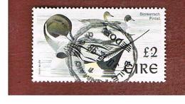 IRLANDA (IRELAND) - SG 1061  - 1998   BIRDS: ANAS ACUTA   - USED - 1949-... Repubblica D'Irlanda