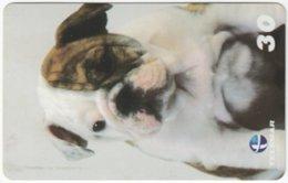 BRASIL H-329 Magnetic Telemar - Animal, Dog - Used - Brasilien