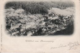 2637128Wildbad Vom Panoramaweg 1897 (Links Unter - Oben Kleine Falten) - Germany