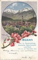 MERAN-MERANO-BOZEN-BOLZANO-BELLISSIMA CARTOLINA VIAGGIATA IL 14-10-1906 - Merano
