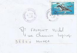 Nouvelle Caledonie 2013 Bourail Humpback Whale Megaptera Novaeangliae Domestic Cover - Walvissen