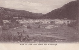 AN06 New Zealand, View Of Hora Hora Rapids Near Cambridge - Local Publisher - New Zealand