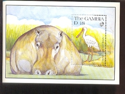 MINT NEVER HINGED SOUVENIR SHEET OF ANIMALS  ; LION ( GAMBIA   1065 - Unclassified