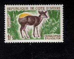 729018704 IVORY COAST POSTFRIS MINT NEVER HINGED POSTFRISCH EINWANDFREI  SCOTT 201 ANIMALS YELLOW BACKED DUIKER - Côte D'Ivoire (1960-...)