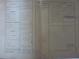 """Pagella """"SCUOLA ZAINI  Bologna Anno Scolastico 1921 / 1922 PAGELLA SCOLASTICA"""" - Diplomi E Pagelle"""