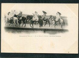 CPA - Manoeuvres De L'Est 1901 - Revue De Bétheny - Les Caïds Tunisiens  (dos Non Divisé) - Manoeuvres