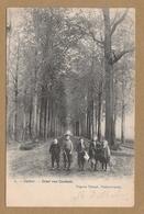 Puurs  7. - Calfort . - Dreef Van Coolhem (1907) - Puurs