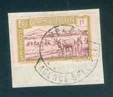 CAMEROUN KAMERUN N°106 OB RARE AMBAN A COLLERETTE AGENCE SPECIALE 25 SEPT 1935 TB - Cameroun (1915-1959)