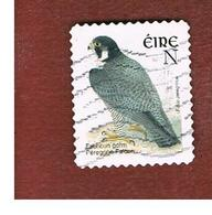 IRLANDA (IRELAND) - SG 1495b  -   2003  BIRDS: FALCO PEREGRINUS  (N)   - USED - 1949-... Repubblica D'Irlanda
