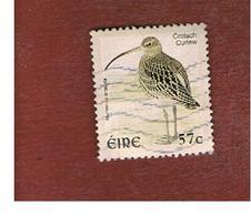 IRLANDA (IRELAND) - SG 1481  -   2002    BIRDS: NUMENIUS ARQUATA  - USED - 1949-... Repubblica D'Irlanda