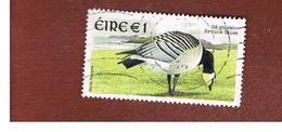 IRLANDA (IRELAND) - SG 1483  -   2002    BIRDS: BRANTA LEUCOPSIS  - USED - 1949-... Repubblica D'Irlanda