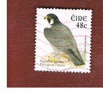 IRLANDA (IRELAND) - SG 1477a  -   2003    BIRDS: FALCO PEREGRINUS   - USED - 1949-... Repubblica D'Irlanda