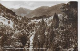 AK 0177  Schladming - Blick Gegen Die Schladminger Tauern Aus Der Talbachklamm / Verlag Tritscher Um 1910-20 - Schladming