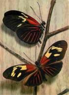 Animaux - Papillons - Papillons Exotiques - 19 - Heliconius Huebneri - Guyane - Flamme Postale De Kourou En Guyane - Voi - Papillons