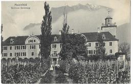 MAIENFELD: Schloss Salenegg Mit Rebbauschule 1916 - GR Grisons
