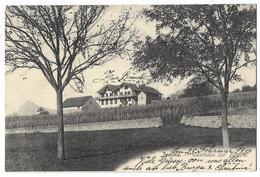 JENINS: Gasthaus Zur Bündte Mit Rebberg 1910 - GR Grisons