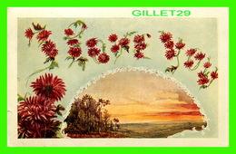 FLEURS - FLOWERS - SWEET FLOWERS - TRAVEL IN 1908 - - Fleurs