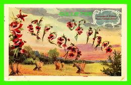 FLEURS - FLOWERS - LANGUAGE OF  FLOWERS - POPPY, I DREAM OF THEE - TRAVEL IN 1909 - - Fleurs