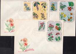 CUBA 1969, FDC, CHRISTMAS, FLORA, COLORS Of PLANTS - FDC