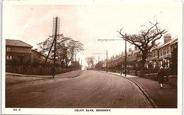 Oxley Bank, Bushbury, Wolverhampton - England