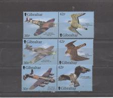 Avions Et Oiseaux- Airplanes And Birds - Gibraltar