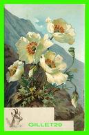 FLEURS, FLOWERS - FLEURS DES MONTAGNES - BOUC - - Fleurs