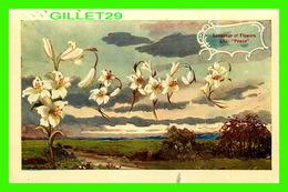 FLEURS, FLOWERS - LANGUAGE OF FLOWERS, LILY, PEACE - TRAVEL IN 1909 - - Fleurs