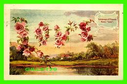 FLEURS, FLOWERS - LANGUAGE OF FLOWERS - ROSE, LOVE - TRAVEL IN 1909 - - Fleurs